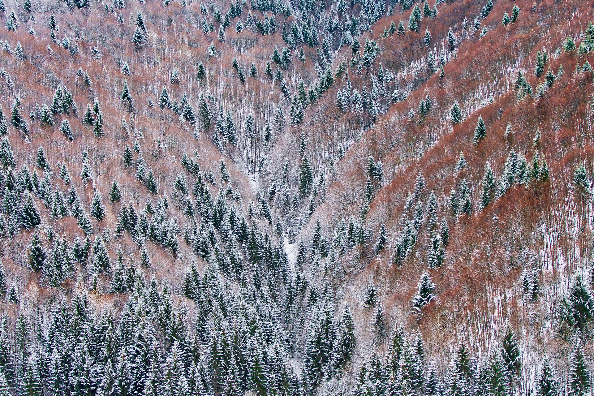 Mitten in den Bergen